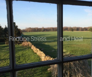 Reduce Stress...and Heal
