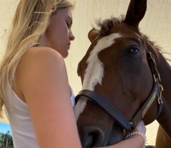 Pikksie Wish Integrative Equine Therapy Horse - Beachwood Center for Wellbeing - Rhode Island and Florida
