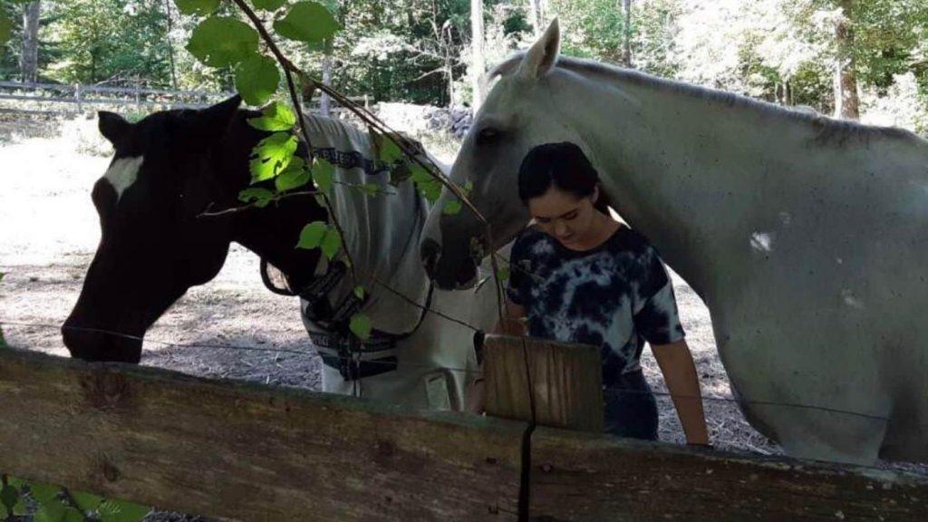 Beachwood Integrative Equine Therapy Horses